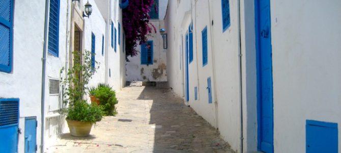 2018年1月チュニジア