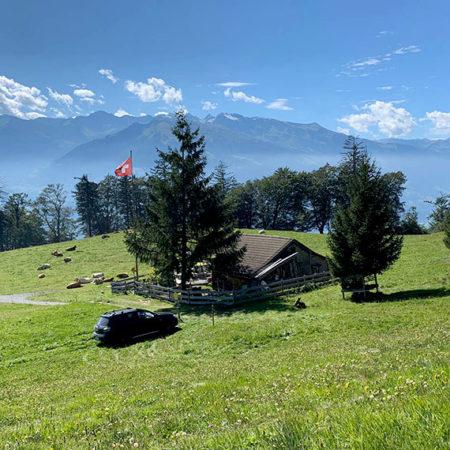 スイスマイエンフェルトでハイジごっこを全力でやる